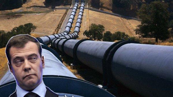 Медведев негодует: Премьер требует «крови» за инцидент с грязной нефтью в «Дружбе»
