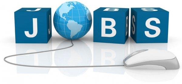 На рынке труда востребованы высококвалифицированные специалисты
