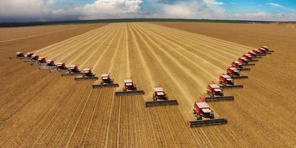 «Престиж сельскохозяйственных профессий возрастает»: Россельхозбанк назвал самые востребованные профессии в АПК